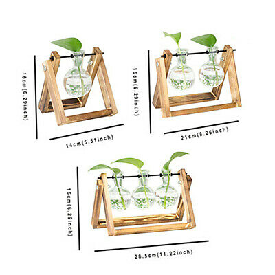 Solid Wooden Stand Glass Bulb Vase Flower Pot Hydroponic Planter Home Decor