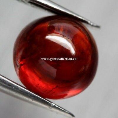 Aaa  Natural Spessartine Garnet Ct 3.52 Red Orange Round Cabochon Cut Namibia