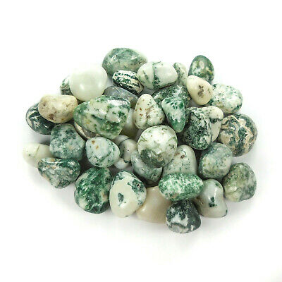 Tree Agate 3 Pcs Tumbled Crystal Polished Gemstone CE19 Raw Healing Crystals