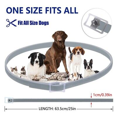 Adjustable Flea and Tick Collar Anti Insects For Pet Dog Cat Safe Pests Control