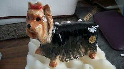 YORKSHIRE TERRIER Ceramic Dog Figurine - John Beswick - Pampered Pooch  BOXED