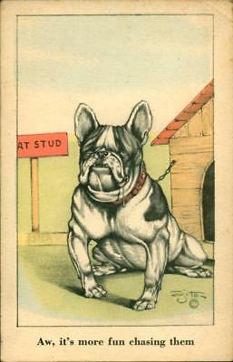 1943 Postcard Bulldog Chained To Dog House Aw, It's More Fun Chasing Them