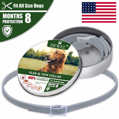 Dewel Adjustable Flea and Tick  Natural Collar  Dogs 8 Months Protection S M L