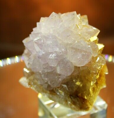 "2.5"" Ametrine Citrine Amethyst Sphere Ball Cactus ""Spirit Quartz"" - South Africa"