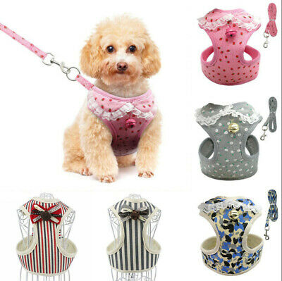 UK Soft Small Dog Harness And Leash Set Puppy Cat Pet Jacket Vest Lead Comely