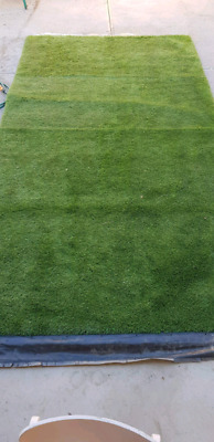 Synthetic turf! Only 3 months old! Practically new!