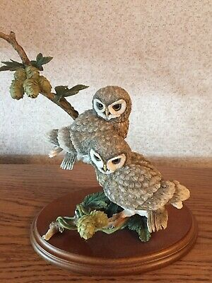 "COUNTRY ARTISTS "" Little Owl Pair with Wild Hops"" No. 01562"