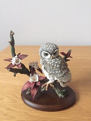 "COUNTRY ARTISTS "" Little Owl With Wild Cherry Blossom"" HAND CRAFTED (01549)"