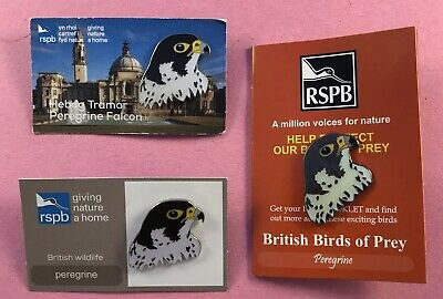 3x Different Colourful RSPB Pin Badge On Cards - Peregrine Falcon Raptor