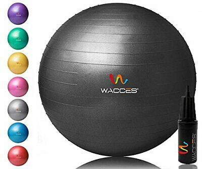 Wacces Professional Exercise Ball, Stability and Yoga Ball Chair, Balance & Birt