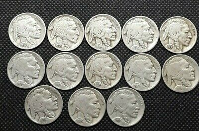 Lot of 13 Buffalo Nickels Full Dates, Various dates and grades