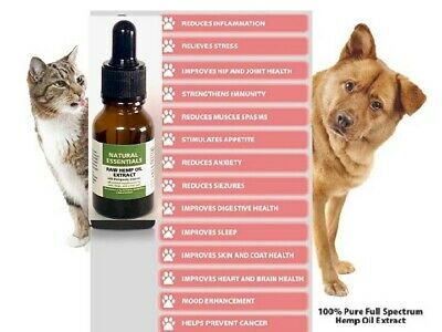 Organic Hempp CBD2 Oil for Dogs n Cats Pets Stress Anxiety Pain Relief 450mg 1oz