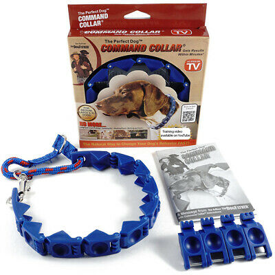 New Don Sullivan Perfect Dog Command Collar Training Pets Prong Choke with DVD