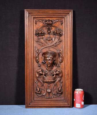 *French Antique Deep Carved Architectural Panel Door Walnut with Face