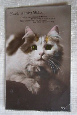 CATS KITTENS Heart Birthday Wishes VINTAGE CAT POSTCARD