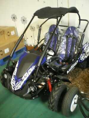 Apache Superbug Gt200 Off Road Buggy Electric Start