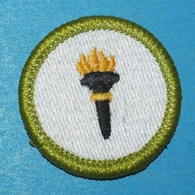 Public Health Type J Merit Badge  -   Boy Scout  7985