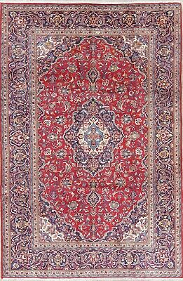 7 x 10 Traditional Persian Wool Hand-Knotted Floral Medallion Oriental Area Rug