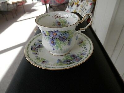 Queen's Bone China Purple Flower Of The Month September Footed Cup & Saucer