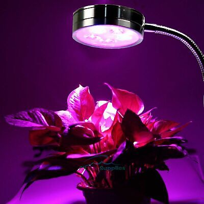 Aquarium Light Bright Red &Blue Plant Grow LED Clip Lamp 5x1W Flexible Arm
