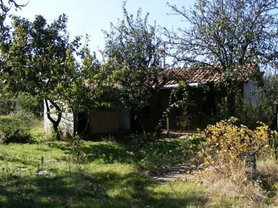 Small holding with wooden cabin £125 a month free Walnut tree :) Bulgaria