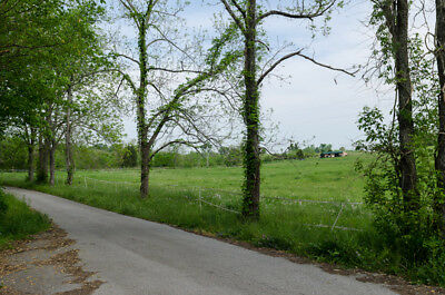 Perryville, Ky   8.25 Acres Residential Lot With Power, Water, Sewer, Internet
