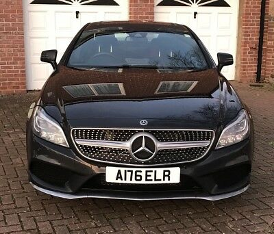 Angela Ang Angie A176 ELR Cherished Reg Number Plate Singh Kaur Fish Fishing A S