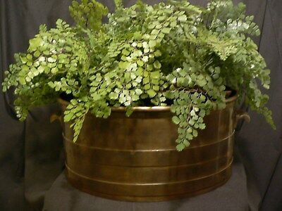 Large Heavy Antique Solid Brass  Decorative Pan