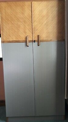 Upcycled Gentlemans Vintage Wardrobe In Farrow & Ball Paint