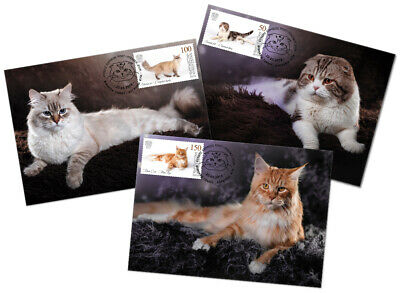 H01 Kyrgyzstan 2019 mi#125-27 Cats Cats Chattes Postcards Used Cto