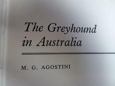 The Greyhound in Australia, M G Agostini, Hardcover