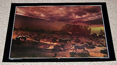 Wild Horses Running STORM Nature Thoughts #41 Horse Poster 1971 Thought Factory