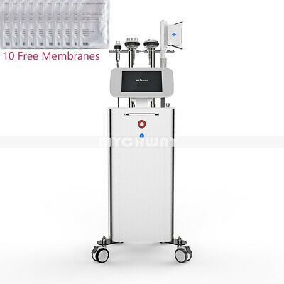 Standing Professional Fat Freezing Machine Cavitation RF Wrinkle Removal Beauty