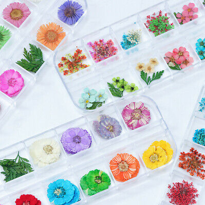 12 Color Real Dry Dried Flower Leaves 3D UV Gel Acrylic DIY Tips Nail Art Decor