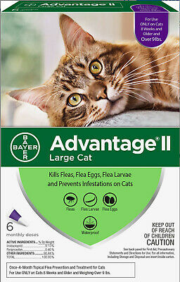 Bayer K9 Advantage II for Large Cats over 9 lbs - 6 Month Supply