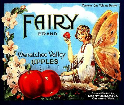 Vintage  Apple cider advertising poster reproduction. Cydax