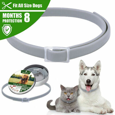 Dewel Flea & Tick Collar for Small large dogs 8 Month Protection, Up to 18lbs