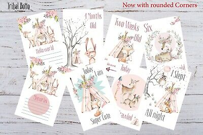 Baby Milestone Cards, Boho Tribal Girls, Pink,Pack of 35. 300 gsm, Photo prop