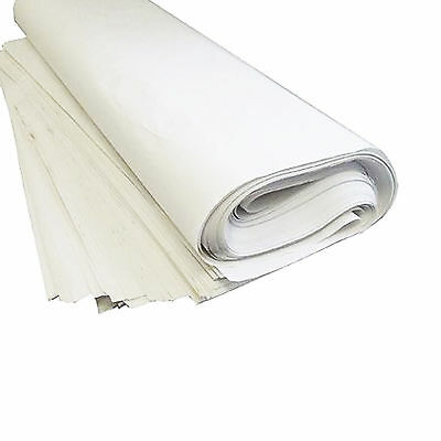 """100x White Packing Paper Chip Shop Paper Newspaper Offcuts Large 20 x 30"""" Sheets"""