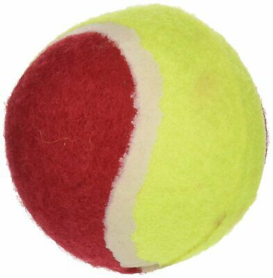 Classic Pet Products Deux Tons de Tennis Fun Ball, Vert/Jaune