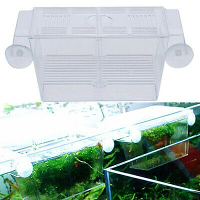 Aquarium Fish Tank Guppy Double Breeding Breeder Rearing Trap Box Hatchery CAL
