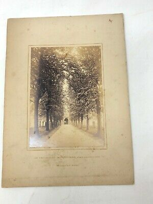 Holy Trinity Church Stratford upon Avon antique photograph cabinet card