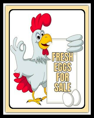 WELCOME TO OUR COOP HENS CHICKENS FREE RANGE EGGS METAL SIGN TIN PLAQUE 387