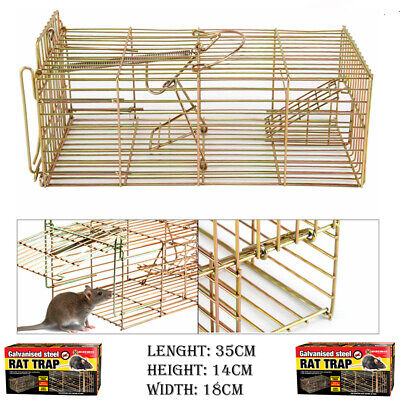 Metal Mouse Rat And Squirrel Cage Trap Live Catch Humane No Poison Vermin Rodent