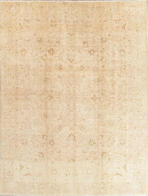 Antique Persian Old 9x13 Wool Hand-Knotted Floral Oriental Muted Area Rug Ivory