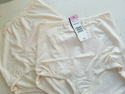 538bd2d91a1 (2) HANES Nude SHAPEWEAR Woman's Light Tummy Control Panel Briefs ~ Sz L NEW
