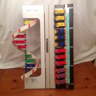 Staco RNA Protein Synthesis Model - DNA - Science Teaching Aids - Retail $699
