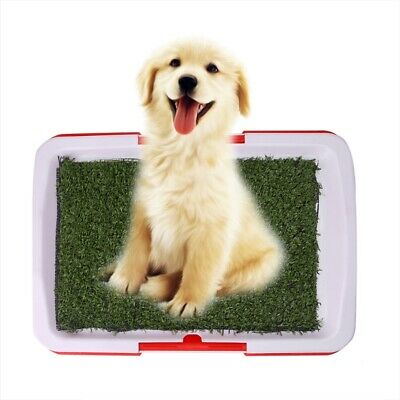 Pet Dog Potty Toilet Urinary Trainer Grass Mat Pad Patch Indoor Outdoor Home New