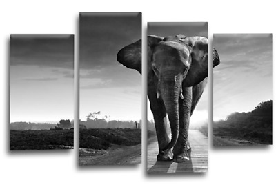 Elephant Wall Art Picture Brown Grey Black Nature Africa 4 Canvas Panels