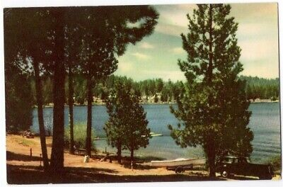 Lake Arrowhead through the Trees Southern California Resort Vintage Postcard Ca